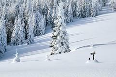 Winter at its best in Beskid Żywiecki Mountains (Paweł Błaszak) Tags: poland nature snow winter beskidy mountains