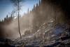 20171115003715 (koppomcolors) Tags: koppomcolors forest skog sweden sverige scandinavia värmland varmland winter vinter