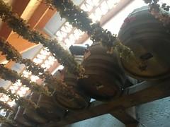 IMG_0748 (burde73) Tags: durello durella montilessini lessinia spumante martinetti metodoclassico cantinadisoave masari fongaro sandrodebruno casacecchin tessari giannitessari