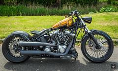 Harley Custombike@FTW (@FTW FoToWillem) Tags: motor motorcycle motornokolo moto motorfiets motociklas motocykel motosiklet motorad motorrad motocicleta motociclo motorcykel mopedo bike bikeshow bikemeet bigtwin harley harleydavidson hd kingcruise borchland royaljack royaljacktank specialpaint specialpaintroyaljack custom custombike custompaint kustom kustombike ftw fotowillem willemvernooy nederland netherlands