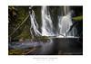 Hogarth Falls Strahan - Tasmania (dominicscottphotography.com) Tags: australia tasmania strahan hogarth falls longexposure leefilters manfrotto waterswirls pattern dominicscott sony a7rm2 ilce7rm2 a7rmii sel2470gm gmaster