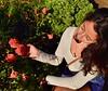 Mi Vida (sygridparan) Tags: vida roses gettycenter losangeles la california flowers sun hermosa garden