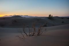Calme - Quiet  ♂️ (bernard78br) Tags: fujifilm fujinon iran kavir lens pays photographie photographiematerieletlogiciels rigejenndesertiran xpro2 xf23f12 desert