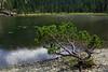 Val d'Aosta - Valle di Champdepraz, lago della Servaz (mariagraziaschiapparelli) Tags: valdaosta valledichampdepraz parcodelmontavic montavic lagodellaservaz montagna mountain avic camminata escursionismo allegrisinasceosidiventa estate lago