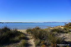 Bungalows del Lago, Estany D'es Peix (astburyformentera) Tags: beach bungalows astburyformentera sea view formentera apartments properties lago