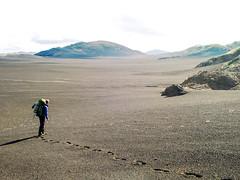 .. where no man has gone before .. until last week (~janne) Tags: janne europa nationalpark mann island wüste menschen lava umwelt natur gestein desert icland environment europe