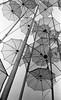 umbrellas (Giorgos Voulgaris) Tags: kodaks100ef film kodak tmax400 bw blackwhite monochrome thessaloniki umbrellas outdoors macedoniagreece makedonia timeless macedonian macédoine mazedonien μακεδονια македонија