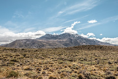 Estepa (julien.ginefri) Tags: argentina argentine patagonia patagonie america latinamerica southamerica latin south elcalafate elchaltén parquenacional nationalpark losglaciares freedom