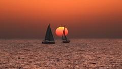 Sailing at sunset -Tel-Aviv beach (Lior. L) Tags: sailingatsunsettelavivbeach sailing sunset telaviv beach sea telavivbeach
