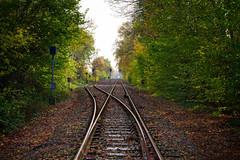 Railroad Blues (Nikonphotography D750) Tags: festbrennweite nikon nikond750 nikonfotografie nikonphotography 50mm railroad eisenbahnschienen schienen zeven norddeutschland herbst autum