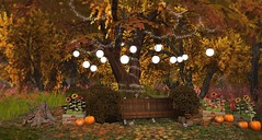 Autumn Harvest (Sannita_Cortes) Tags: circa autumn decoration fall featured furniture landscaping nature pinkmagic swank tree circaliving building bush decorating furnituredecor garden virtualworld virtual virtuallandscape virtualnature virtualdecoration home