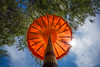 IMG_8537 (Brett Kotch.) Tags: indonesia parasol beach life umbrella sky tree orange colour travel photography canon fullframe explore asia culture lookup angles day outdoors outside perspective