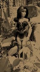 Wonder Woman (Spring 2017) (gavinpippin1) Tags: wonder woman gal gadot edit vintage sword film dc comics amazon superhero heroine