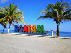 Roatán (AlfredoZablah) Tags: travel traveling photography light live vacation yellow beach tour landscape art bird fashion family fun garden macro old classic sea trip surf surfers waves sunday sunny belize belizean caulker palapa blue sky babes brazileñas brazilians bikinis natura delfines dolphins nadando olympus reflex uro e510 zuiko digital 70300mmed modelos roatan honduras playas sol arena flickr flickrs caribe caribean paparazzi