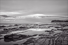 Bright eyes (JustAddVignette) Tags: australia blackandwhite clouds collaroy headland landscapes longexposure monochrome newsouthwales northernbeaches ocean rocks seascape seawater sky sunrise sydney water