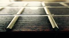#MusicalInstruments (annenelson4) Tags: macromondays memberschoicemusicalinstruments