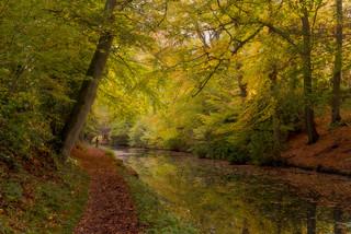 Gone Fishing - Winchfield