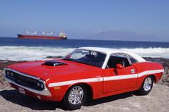 1970 Dodge Challenger R/T Diecast 1:24 made by Maisto (rigavimon) Tags: diecast miniaturas 124 1970 dodge challenger antofagasta maisto