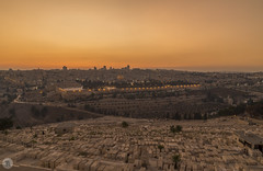 Sunset [IL] (ta92310) Tags: travel moyenorient middle east israel jerusalem summer 2017 sunset sun soleil architecture unesco silhouette holycity religion judaism christianity islam oliviers mont mount