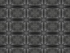 monochrome pattern mirror effect (Ciddi Biri) Tags: abstract alien backdrop background creative decoration design fabric frame furniture geometric graphic green grunge illustration microscopic pattern plant shape shield shiny skin style texture textured wallpaper penep5 olympus60mmf28macro m43turkiye