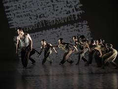 _9041089 (黎島羊男) Tags: 雲門 關於島嶼 林懷民 formosa cloudgatedancetheatre cloudgate dance theatre linhwaimin olympus em1markii zuiko 1454mm