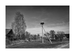 Stork (Jan Dobrovsky) Tags: countryside landscape leica ukraine volyn monochrome stork reallife blackandwhite outdoor rural village countrylife document leicaq