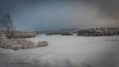 20171129001177 (koppomcolors) Tags: koppomcolors winter vinter snö snow värmland varmland sweden sverige scandinavia