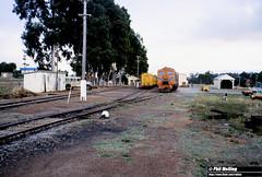 2887 XA1412 XA1403 shunting Kojonup 2 April  1982 (RailWA) Tags: railwa philmelling westrail 1982 railway station xa1403 xa1412 kojonup