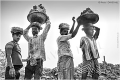 Four Heads Better Than Two (channel packet) Tags: india west bengal industry brick making works workers porters clay loads monochrome davidhill