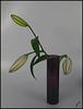 Sad lily (JAKE473) Tags: still life lily blue vase