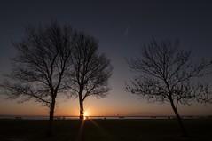 WPG Printed challenge (daveknight1946) Tags: summerlights sunrise essex eastbeach shoeburyness silhouette threetrees sunburst