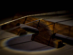 306.365 Under the Bridge (marcy0414) Tags: project365 macro banjo bridge macromonday macromondays memberschoicemusicalinstruments