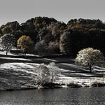 Autumn impression - Einruhr/Eifel thumbnail