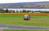 Typical Finger Lakes Scene (+David+) Tags: fingerlakes senacalakevinesfall colorroute 14 glenorawinery