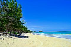 Bellows Beach (trailwalker52) Tags: art bellows beach hawaii waimanalo paradise oahu landscape outdoor shore seaside coast sand