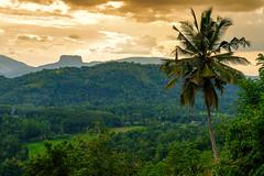 Kandy, Sri Lanka (A Vahanvaty) Tags: landscape travel travelphotography scenery scenic fujifilm xpro2 sunset nature green greenery kandy srilanka clouds