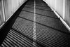 It's all about lines (PeteZab) Tags: lines sidelight texture pattern abstract blackandwhite bw mono peterzabulis petezab