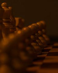 Game pieces / Macro Mondays (camillagarin) Tags: macro mondays members choice games or game pieces