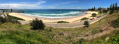 Hastings River Entrance and Town Beach, Port Macquarie, NSW (Black Diamond Images) Tags: view townbeach townbeachportmacquarie portmacquarie nsw australianbeaches midnorthcoast beach northbrothermountain panorama appleiphone7plus iphone7plus appleiphone7pluspanorama iphone7pluspanorama iphonepanorama water sky beachlandscapes landscape grass sea sign road surf hastingsriver entrance breakwalls