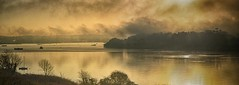 Golden Mist (suerowlands2013) Tags: dawn sunrise mist riverlynher secornwall churchtownfarmnaturereserve wilcove thelookingglass silhouettes