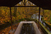 Lavatoio (Marta Panzeri) Tags: stream autumn fall leaves orange water fountain washing wood trees nature landscape