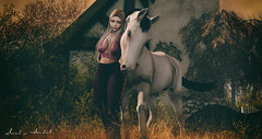 The only people you owe your loyalty to are those who never made you question theirs... (Neda Andel ~SLooK4U Blog) Tags: horse blonde loyalty slook4u purple