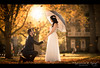 Amenda-Hassan-19 (Expressions and Beyond Photography) Tags: engagement royalwedding princess propose onhisknees whitedress canon5dmk3 135mmf2
