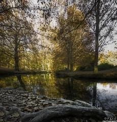 Las Fuentes del Marques_03 (Pyass2015) Tags: caravaca fuentesdelmarques bosque forrest landscape parque murcia autum otoño