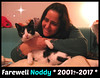 Farewell my dear Noddy ! :'( (Silvia Inacio) Tags: noddy tuxedo tribute rip gato gatos cat cats farewell rainbowbridge