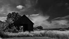 the sacrifice... (BillsExplorations) Tags: sacrifice abandoned abandonedillinois barn barnsandfarms farm crib building trees field clouds sky ruraldecay ruraldeterioration rural country forgotten lost alone urbansprawl blackandwhite monochrome waltersmith