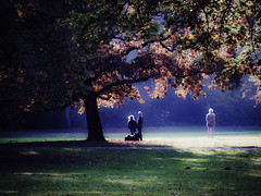 Berlin (jim2302) Tags: berlin tiergarten trees autumn landscape light color colour lightroom olympus olympusomdem5ii october magiclight magic