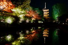 DSC06104 (MrSUIZOU) Tags: 京都 紅葉 ライトアップ kyoto 東寺 五重塔