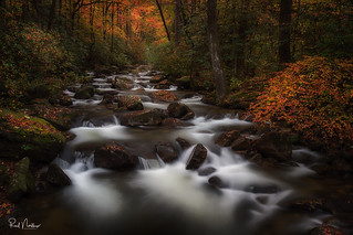 Rolling Autumn River