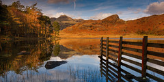 Pause For Reflection (Adam West Photography) Tags: adamwest autumn beauty blea bracken cumbria dales england fells heritage hills jacket lake lakedistrict landgdale langdalepikes mirror mountains nationalpark photographer pine red reflections sidepike tarn tree uk world color colour composition perspective unesco